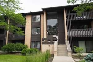 6137 Knoll Wood Rd #305 Willowbrook, IL 60527