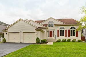 229 Southfield Dr Vernon Hills, IL 60061