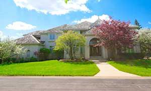 9284 N Cascade Circle Burr Ridge, IL 60527