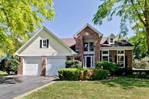 548 Williams Way Vernon Hills, IL 60061