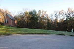 1224 Ava Pearls Way Louisville, KY 40245