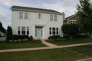 284 Lasalle St Vernon Hills, IL 60061