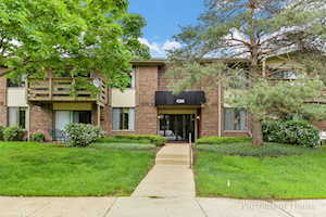 456 Raintree Ct #2A Glen Ellyn, IL 60137