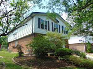 16714 Hillside Place Tinley Park, IL 60477