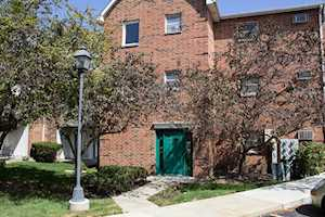 1313 Cunat Ct #2A Lake In The Hills, IL 60156