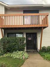 93 Michigan Ct Vernon Hills, IL 60061