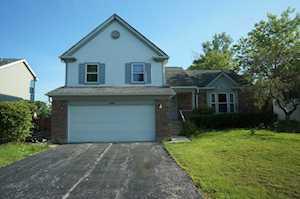 110 Copperwood Dr Buffalo Grove, IL 60089