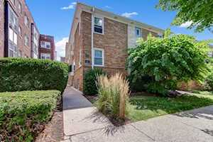 33 S Madison Ave #1B La Grange, IL 60525