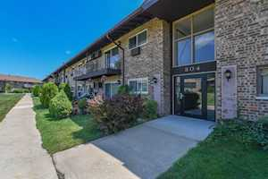 804 E Old Willow Rd #206 Prospect Heights, IL 60070