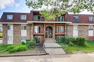 585 Hill Dr #11313 Hoffman Estates, IL 60169