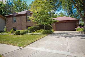 4 Cambridge Ct Buffalo Grove, IL 60089