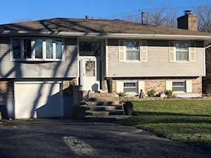 15408 W Fair Ln Libertyville, IL 60048