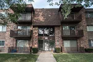 17515 Sandalwood Dr #204 Tinley Park, IL 60477