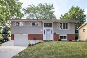 335 W Newport Rd Hoffman Estates, IL 60169