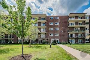 5300 S Walnut Ave #1B Downers Grove, IL 60515