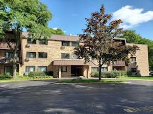 2604 N Windsor Dr #203 Arlington Heights, IL 60004