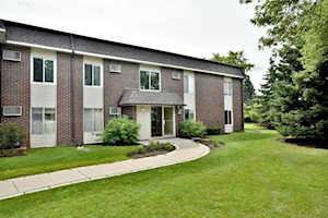 1117 Miller Ln #107 Buffalo Grove, IL 60089