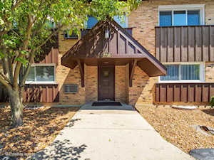 2200 Arbor Circle #2 Downers Grove, IL 60515
