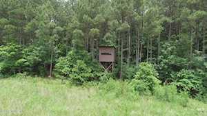 1 Woodpecker Ln Murray, KY 42071