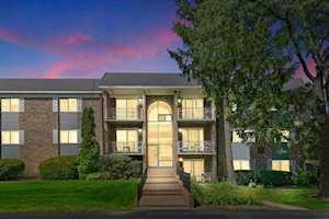 1521 N Windsor Dr #115 Arlington Heights, IL 60004