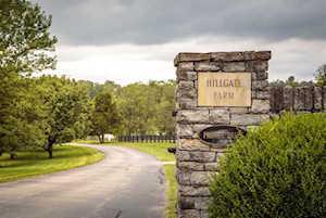 1874 Hillgate Drive Lexington, KY 40515