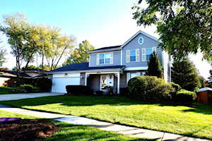 10S241 Wallace Dr Downers Grove, IL 60516