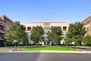 1000 Village Center Dr #111 Burr Ridge, IL 60527