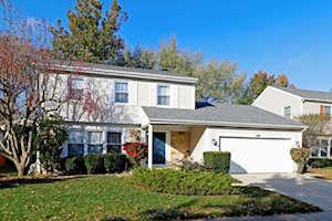 1343 Logsdon Ln Buffalo Grove, IL 60089