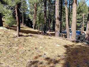 123 Alpine Mammoth Lakes, CA 93546