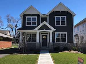 1717 S Prospect Ave Park Ridge, IL 60068