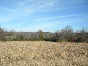 3145 Lilly Pike Taylorsville, KY 40071