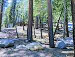 123 Alpine Circle Mammoth Lakes CA 93546 | MLS 180310