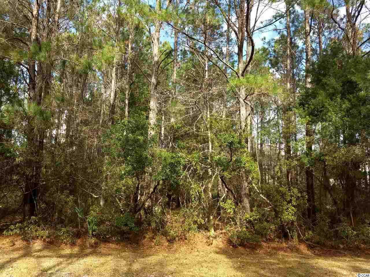 Lot 5 Collins Meadow Drive Georgetown, SC 29440 | MLS 1800438 Photo 1