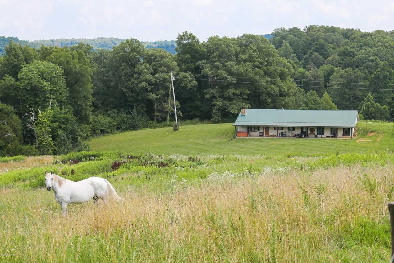 5950 Segal Rd Brownsville KY in Edmonson County - MLS# 1502554 | Real Estate Listings For Sale |Search MLS|Homes|Condos|Farms Photo 1