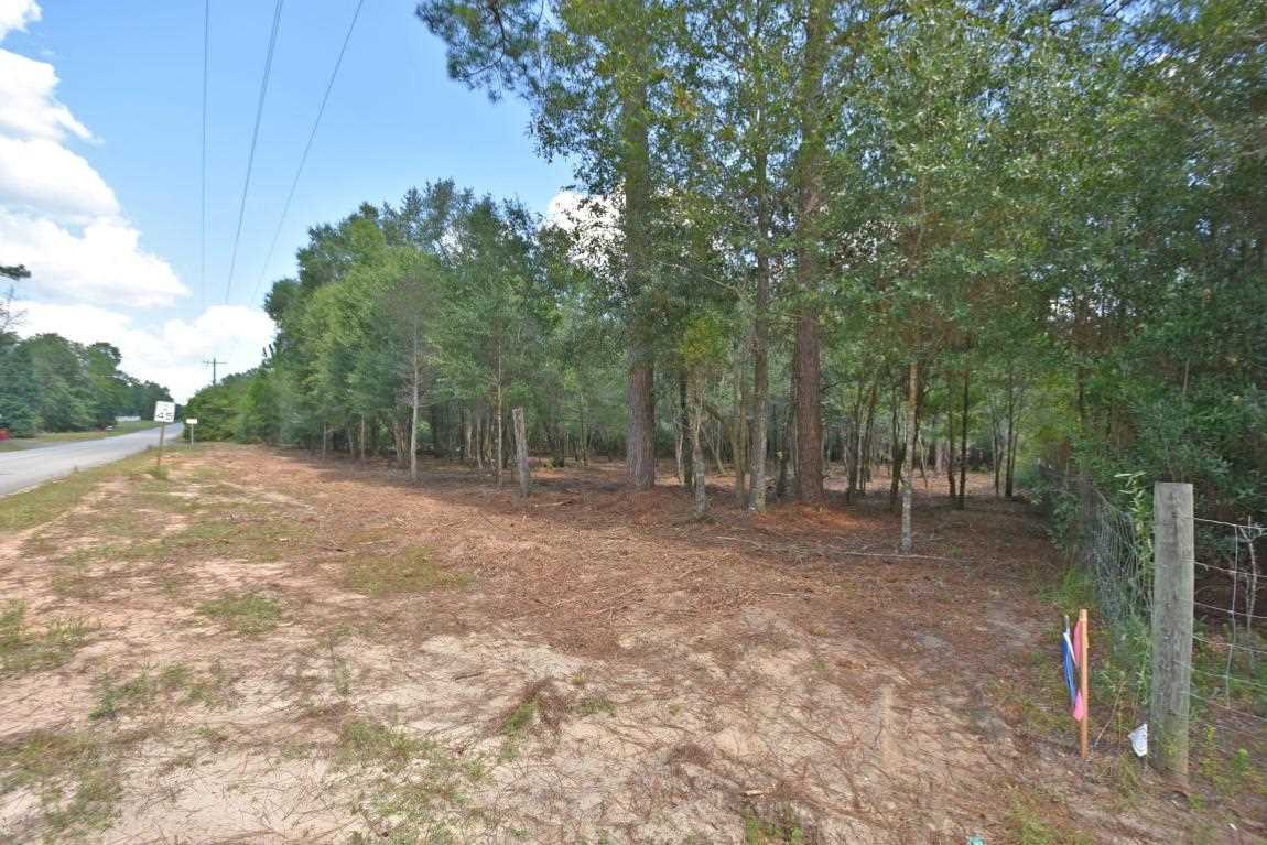 1.31 AC Wilkerson Bluff Road Holt, FL 32564 | MLS 784229 Photo 1