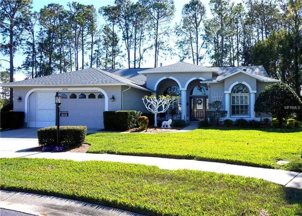 18714 Dove Hollow Court Hudson, FL 34667 | MLS U7845403 Photo 1