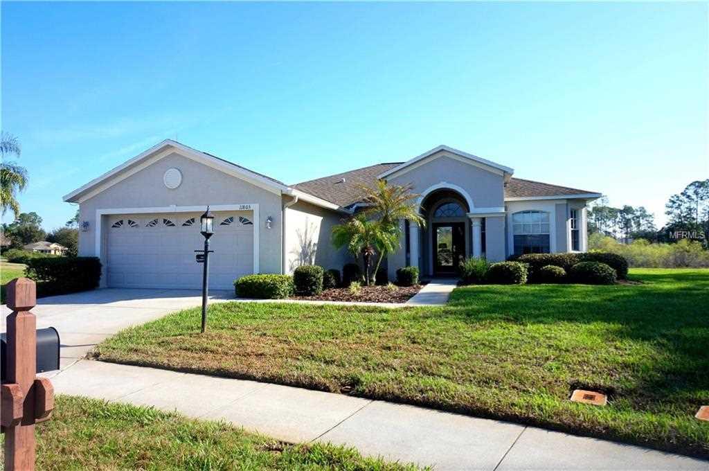 11803 Wayside Willow Court Hudson, FL 34667 | MLS U7848506 Photo 1