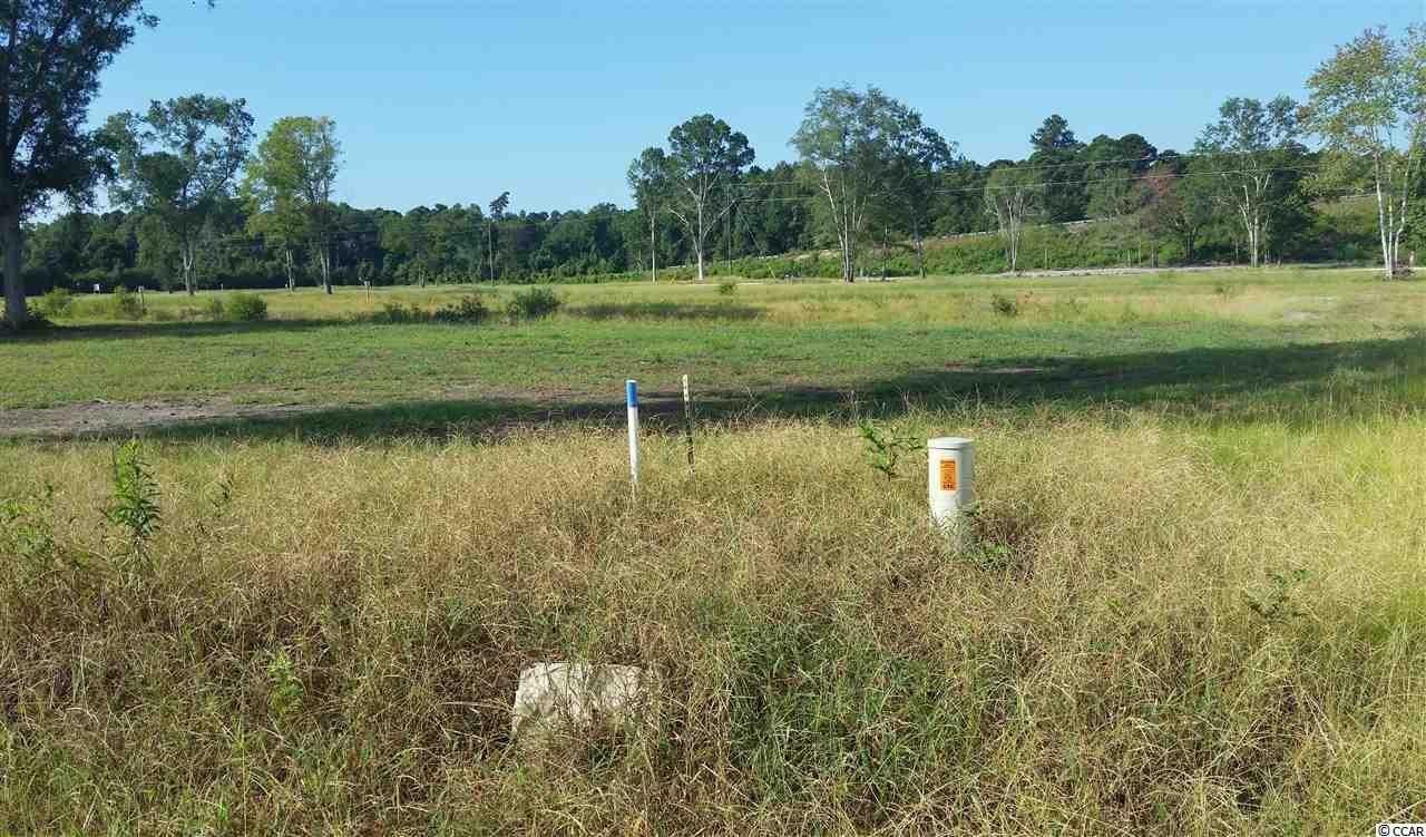 Lot 2 Math Place Little River, SC 29566   MLS 1900649 Photo 1