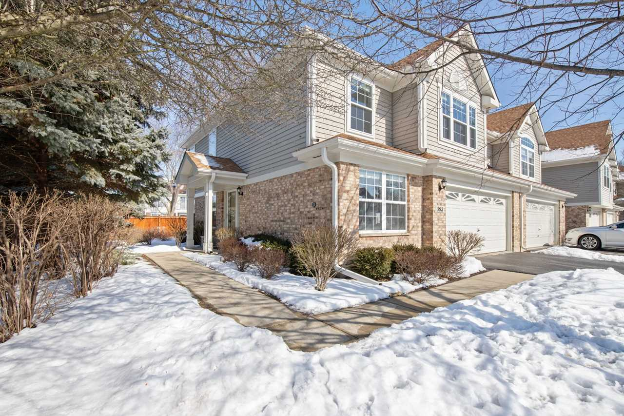 393 Bloomfield Ct Vernon Hills, IL 60061 | MLS 10266783 Photo 1