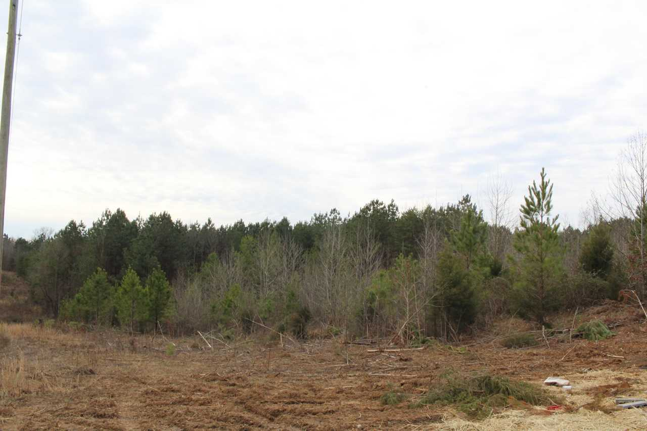 Lot 11 12 County Road 775 Riceville TN 37370 in  | MLS 1069373 - GreatLifeRE.com Photo 1