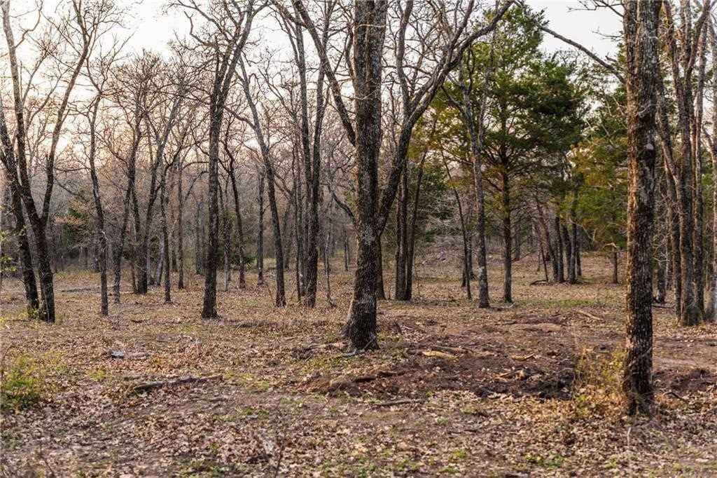 Knotted Oaks Way, Valley View, TX 76272   MLS® #14043492 Photo 1