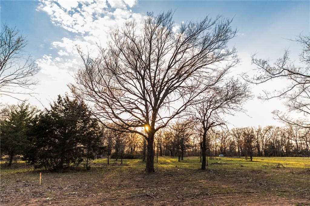 Knotted Oaks Way, Valley View, TX 76272   MLS® #14043499 Photo 1