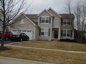 94 Meadows Dr Gilberts, IL 60136
