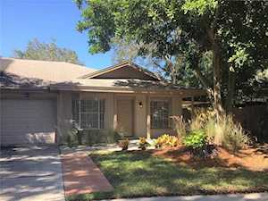 Homes For Sale In Lake St George Palm Harbor Lipply Re