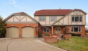 2906 Scottish Pine Ct Buffalo Grove, IL 60089