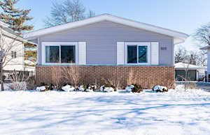805 S Berkley Ave Elmhurst, IL 60126