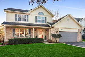 307 Haddon Circle Vernon Hills, IL 60061