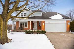 407 English Oak Terrace Buffalo Grove, IL 60089