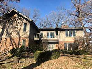 21850 W Pine Lake Circle Kildeer, IL 60047