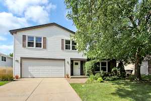 916 Thornton Ln Buffalo Grove, IL 60089